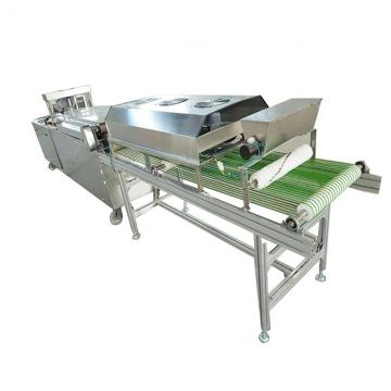 Ce Certificate Corn Chips Maker
