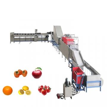 commercial dried date mango fruit and vegetable processing dehydrator drying machine production line