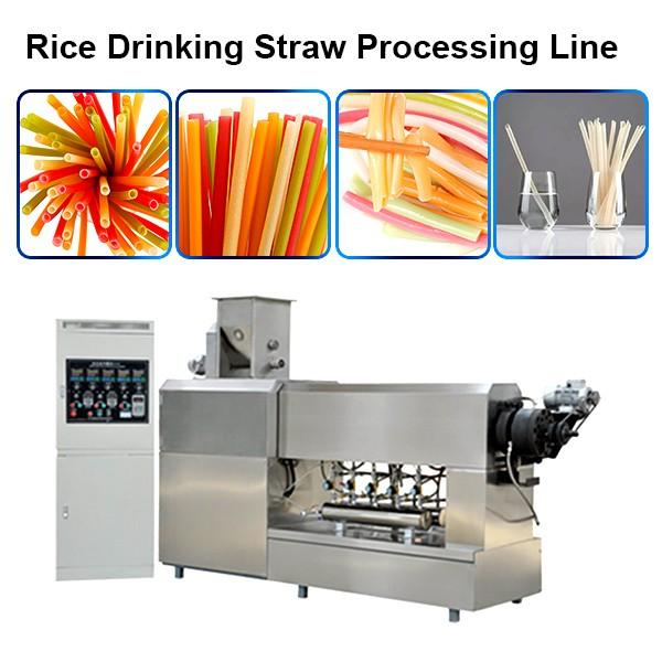 Edible Eco Friendly 100-150kg/H Best Quality Rice Making Drinking Straw Machine Pasta ... #1 image