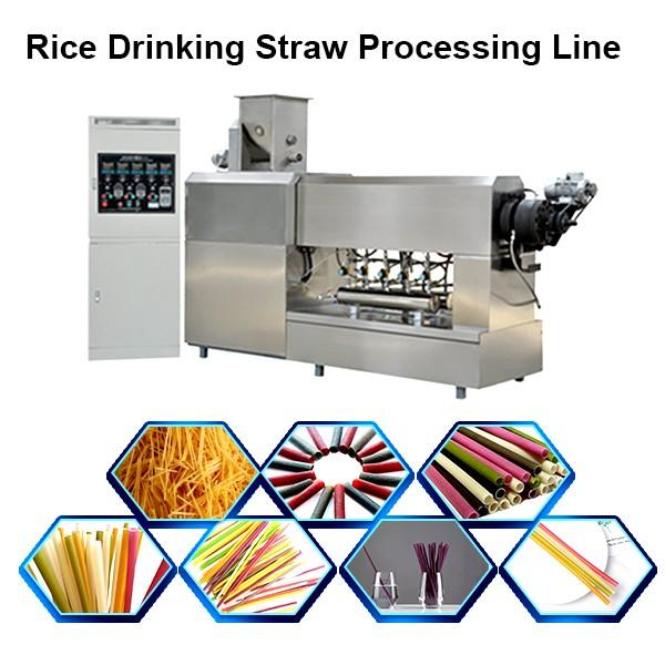 Pasta Straws Machine Drinking Straw Machine Rice Straw Machine #1 image