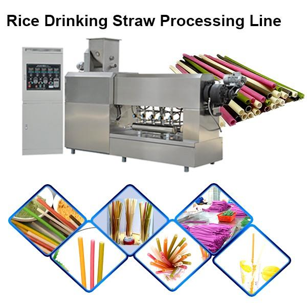 Stainless Steel 100 Kg/H Stainless Steel Fully Automatic Macaroni Pasta Making Machine Degradable Straw Making Machine #1 image