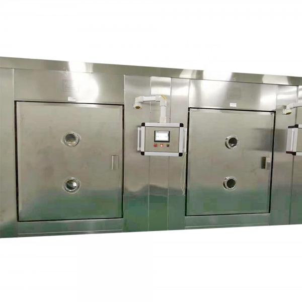 Industrial Vacuum Fruits Vegetable Flower Drying and Sterilizing Machine Microwave Dryer #1 image