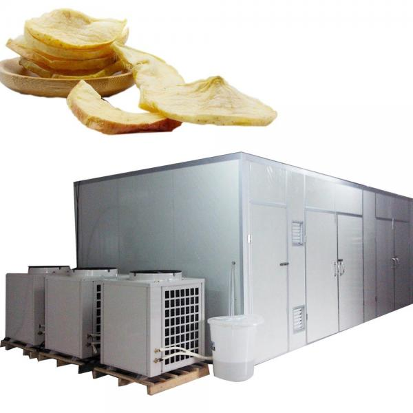 Food Machine Steam Heating Dryer for Vegetable and Fruit #1 image