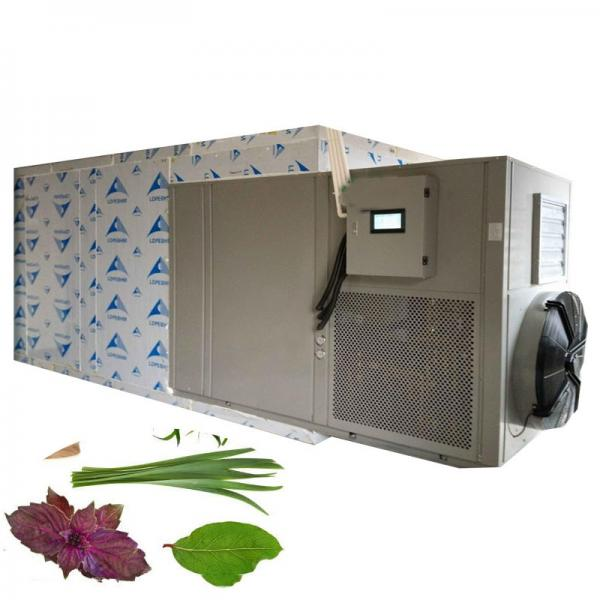 Freeze Drying Machine /Vacuum Freeze Dryer #1 image